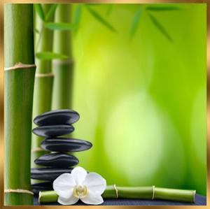 bamboo-fusion